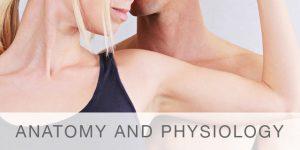Anatomy-Physiology